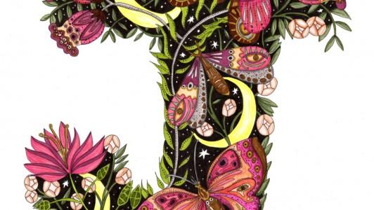 A2 Moth & Moon Art Print