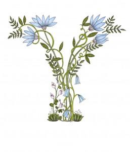 A4 Bluebell Y Art Print