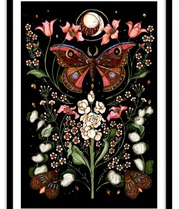 A1 Wall Art Collection / Metanoia / Butterfly Moon